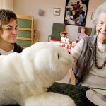 介護施設でパロとペッパーが大活躍!気になる値段と高齢者に与える効果について